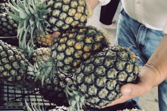 Pineapples at the farmers market