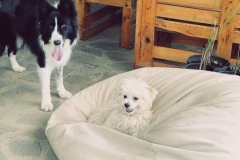 Una and Rita, best friends