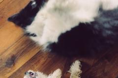 Rita and Una, Best friends