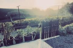 The sun rising over the Solar Branco Eco Estate