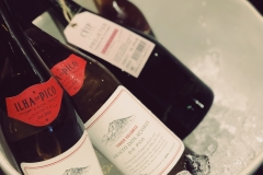 A selection of our wines from Pico
