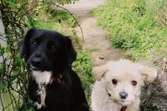 Rita & Buddy