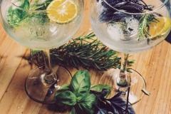Basil gin and tonic