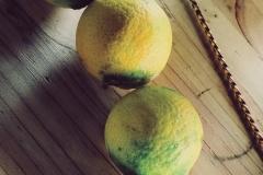 Yoku lemons for Japanese gin and tonics