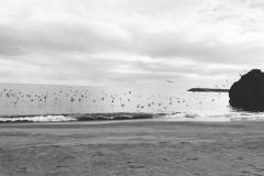 Caggaros on the beach