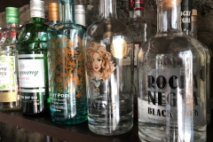 The latest gins in the collection