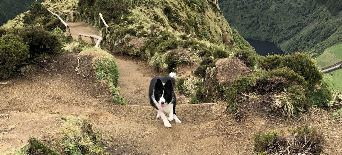 Una hikes the Azores