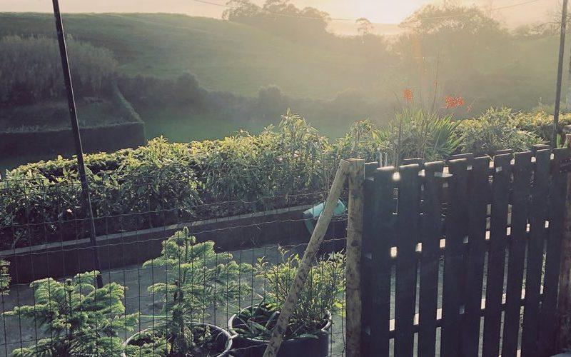 The Solar Branco Eco Estate