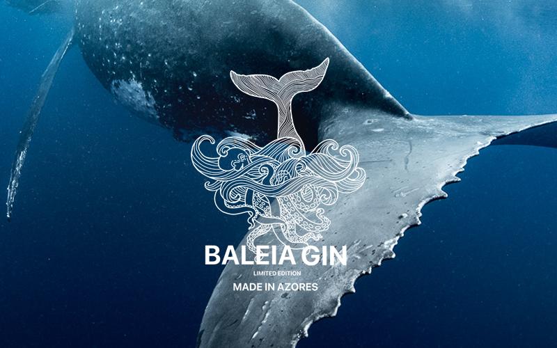baleia-giin3